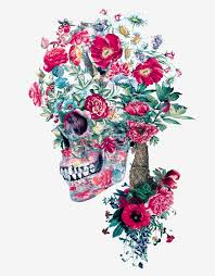 colorful floral skull illustrations by riza peker designwrld