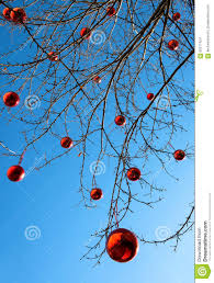 outdoor decorated tree stock photo image 65217424