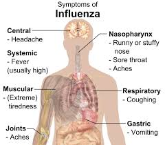 when i cough i get light headed flu symptoms how you ll feel if you catch the influenza virus