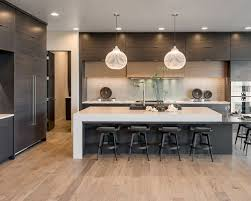 kitchen ideas modern 15 best modern single wall kitchen ideas remodeling photos houzz