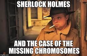 Funny Down Syndrome Memes - ai as primas do shawn mendes http palavrasdoabismo blogspot