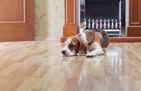 scratch resistant hardwood flooring dogs flooring designs