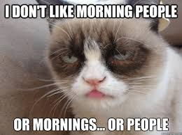 Morning People Meme - i don t like morning people or mornings or people i hate