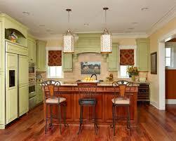 lime green kitchen houzz