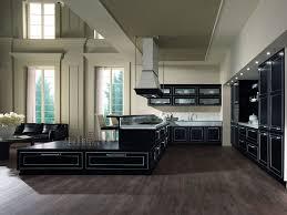 cuisine de luxe allemande cuisine cagnarde rustique 73 photo de cuisine moderne design