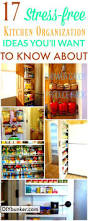 wood prestige statesman door merapi kitchen cabinet organizing