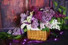 vintage bouquet vintage bouquet of lilac flowers stock photo image 40094275