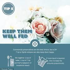 How To Revive Flowers In A Vase Simple Tips To Make Fresh Cut Flowers Last Longer Daily Mail Online