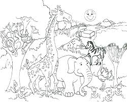 zoo coloring pages preschool zoo coloring pages to print zoo coloring pages zoo coloring pages