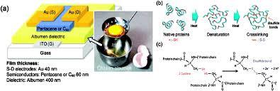 green u201d electronics biodegradable and biocompatible materials and