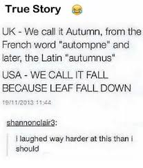 Autumn Meme - 25 best memes about its fall its fall memes