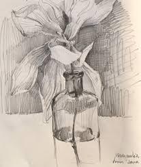 magnolia 3 4 16 sketchbook by sarah sedwick art drawing