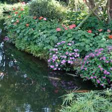 immagini di giardini fioriti risultati immagini per immagini di giardini fioriti scuola
