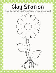 a coloring page of a flower eliolera com