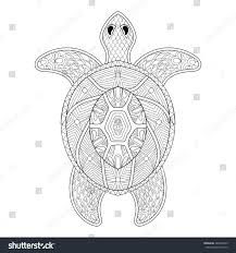 turtle zentangle style freehand sketch stock vector