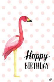 funny dog happy birthday wishes 100 happy birthday dog images