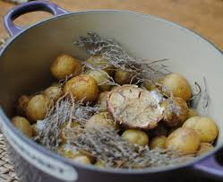 cuisiner les pommes de terre de noirmoutier recette cocotte de pommes de terre primeur de noirmoutier au gros
