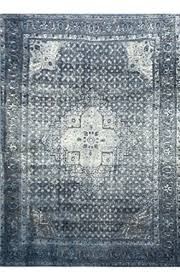 10 X 11 Rug Amazon Com Traditional Vintage Inspired Overdyed Distressed