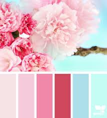 Bloom Color Bloom Design Seeds
