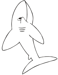 sharks coloring pages 53 best sharks images on pinterest sharks coloring and coloring