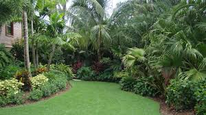 Florida Backyard Landscaping Ideas Fabulous Florida Backyard Landscape Ideas Images Of Florida