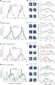 evidence for encoding versus retrieval scheduling in the