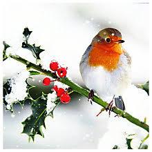 ling designs christmas cards john lewis