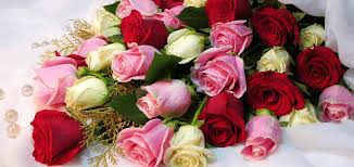 flower delivery express flowers delivery calgary online flowers shop florist in calgary