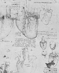 Anatomy Of The Heart Lab The History Of The Heart