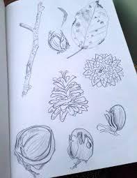sketchbook project week 4 charlotte hupfield ceramics
