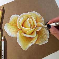 1663 best drawing u0026 colored pencil techniques and examples images