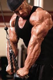 113 best bodybuilding images on pinterest bodybuilding