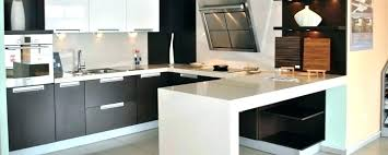 Replacement Doors For Kitchen Cabinets Costs Can I Just Replace Kitchen Cabinet Doors Ment How Much Do