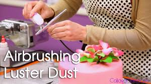 Airbrush System For Cake Decorating How To Use Luster Dust With An Air Brush On A Cake Youtube