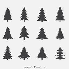 pine vectors photos and psd files free