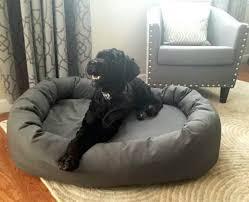 Ll Bean Dog Bed Memory Foam Dog Bed U2013 Restate Co
