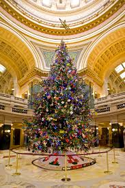 fuking lol these poverty uk christmas trees pics page 3