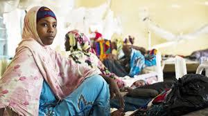 a fearless advocate for somali women in dadaab international