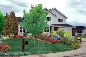 colorado landscape design ideas commercial sign area planting bed