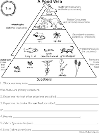 ecological pyramid worksheet food pyramid food chains and cartoon