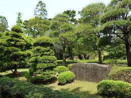 the 10 most beautiful parks in tokyo