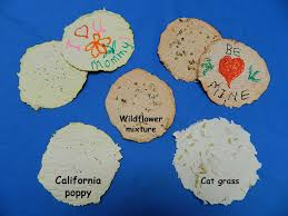 flower seed paper nasa climate kids make seed paper