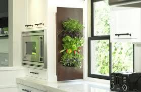 plante pour cuisine déco plantes decoratives murales cuisine plantes vertes pour