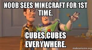 Noob Meme - noob sees minecraft for 1st time cubes cubes everywhere buzz