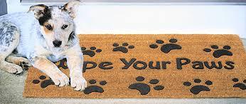 Buy Wipe Your Paws Door Amazon Com Wipe Your Paws Rubber Embossed Coco Coir Doormat 18 X