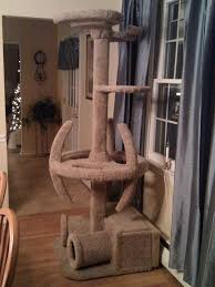 Cool Cat Scratchers Cool Cat Trees On Pinterest Cat Scratching Cats And Design Your