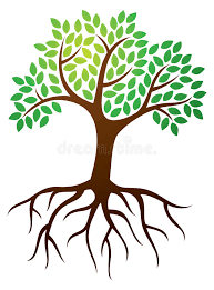 tree roots logo stock vector illustration of icon leaves 34346189
