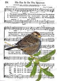 his eye on the sparrow wildlife nature bird spiritual hymn