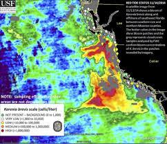 Usf Map Sanibel Red Tide Report Sanibelcaptivanews Com