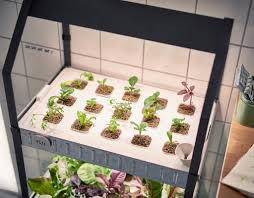 indoor garden kits with light all the best garden in 2017